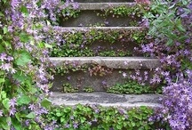 Garden Path/Steps / by Linda Webb