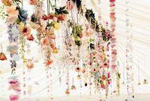 Wedding Stuff / wedding stuff / by SUPERWOWOMG