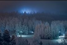 Frigid / My kind of winter wonderland / by Sarah Wednesday
