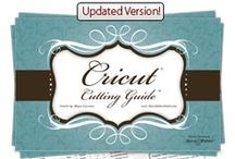 DIY - Cricut / Silhouette / Scrapping / Scrapbooking SGV Vinyl Iron Fabric / by Ana Kammarman