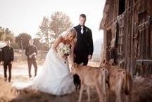 DIY-Great Wedding Ideas / by MaryBeth Carpenter