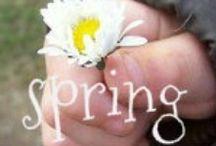 Spring / Spring sunny days / by Sunny Days