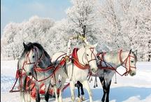 Seasons: It's Snowing! / by Jeff Debbie Forrest