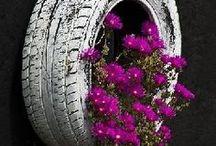 Gardening / by Tina Topolewski