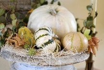 autumn / Nature - Decorating - Recipes  / by Kimberly Miller