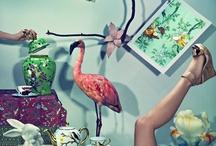 styling ideas / by Elaine Lourens