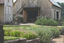 Country Home Living / Growing up in Ohio, I can't help but love the rural/country life and farming, which is our biggest industry. / by Cynthia Wagenhauser, MSW, LISW