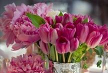 flora . sur la table / Flowers to decorate a tablescape / by Sandra Hachey