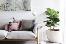 fiddle fancy... / the fiddle leaf fig tree, a stylists green treasure, grow big - fill rooms - create fancy ... / by welivelikethis