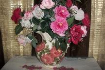Beautiful Pottery / by Teresa Noah-Brown