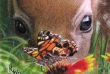 butterflies - insects / by Karen Rinehart