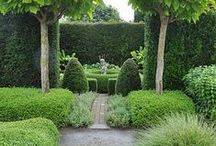 Gardens / by Amy Hirsch