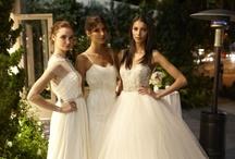 Brides Magazine Event / by JLM Couture