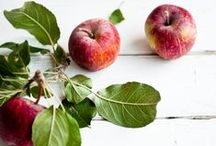 Autumn & Apples  / by Navya Kelly (the little flower cottage)