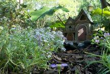 Miniature Garden / by Barbara Sissel