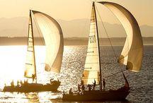 Set Sail / Sail Boats / by nancy j