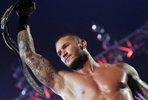 Randy Orton / WWE $uper$tar$ 