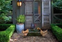 chickens / by Jenny Svensson