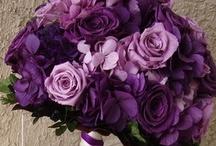 Wedding Ideas / by Jimmy Ann Campbell
