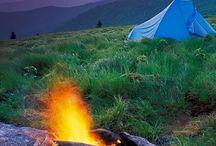 Camping / by Gregg Burch