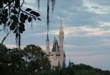 Walt Disney World / by Lou Mongello