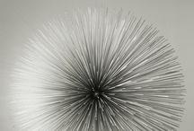 art :: sculpture / A collection of 3D and sculptural work including favorites like Barbra Hepworth, Kim Byoungho, Eva Hild, Constantin Brancusi, Alexander Calder, Jean Arp, Isamu Noguchi and others. / by David Shultz