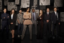 Fave TV Shows - DVR Que / by Ivonne Agraan