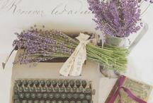 Hydrangeas, Lavender, Lilacs & Wisteria / by Gladys Johanna Méndez de Torres