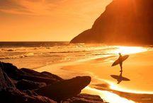 surf&skate / by Ilka Freitas