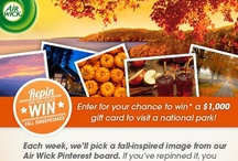 Fall Sweeps(Now Closed) / :: The Repin-to-Win Fall Sweepstakes is now closed. Thank you for entering!  Follow us on Pinterest to stay tuned for upcoming opportunities and like us on facebook.com/airwickus to learn about new promotions, offers, fragrances, products and more! ::