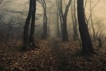 Eeeerrieee/Spooky/Dark / by Marlene Frishman-Morgan