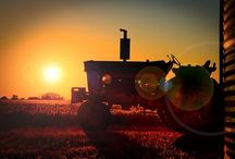 Tractors & Gators for my Devan / by Yvonne Subbert