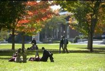 Top Study Spots / by Bowdoin College