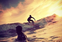 Surf's up / by Adele McKeon