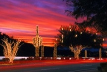 ~Phoenix and Surrounds - Where I Live and Work~ / Our Beautiful Valley of the Sun / by Cici Bianca