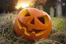 Holidays: Halloween / Halloween pumpkins, costumes, decor, crafts, parties, cakes, fonts, art, and fun. / by Toni Dawn