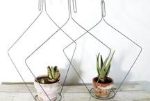 garden + home / by Perennial