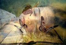 Enchanted  / by Kristel Bergman