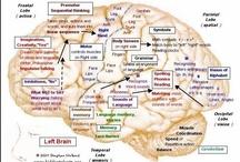 Let's get Neurological! / by Amanda Driedric