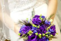 Peacock Wedding  / Peacock themed wedding in November / by Brittany Minard