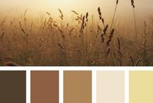 Mis Colores / by Yaya Posada