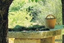 for my garden / by Rosalie Cronin
