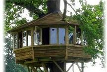 Tree houses / by Cindy Neidt
