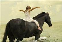 Horses / by Living Vintage | Kim Gaynor