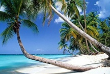 Tropical Latitudes / Images and pictures from tropical latitudes includes sandy shores, beaches, tropical islands from around the world - #beach #island #tropical #tropic  / by Fred Steube