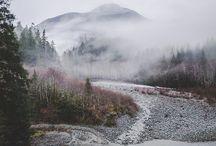 Mist / by Conny Larrain