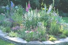 Gardening -- food, fun & flowers / by Gail Ledbetter