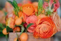 Flowers / by Janey (Utah Valley Foodie)