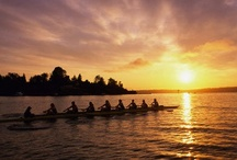 Rowing / Crew, rowing / by Angie T