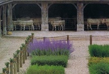 garden spaces / by laurie wheeler